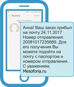 Смс о прибытии Mesoforia.ru